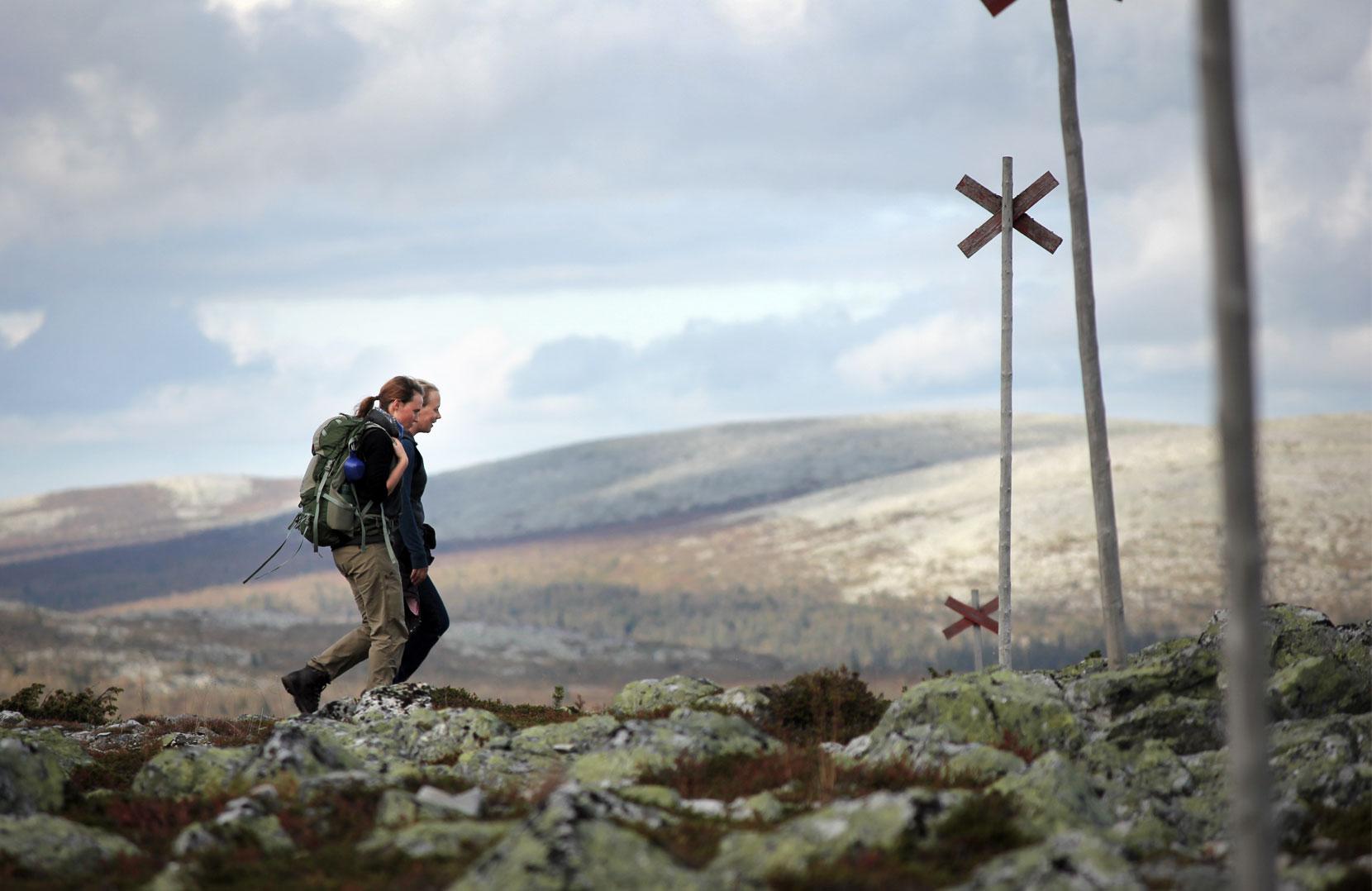 Het Scandinavische antwoord op El Camino